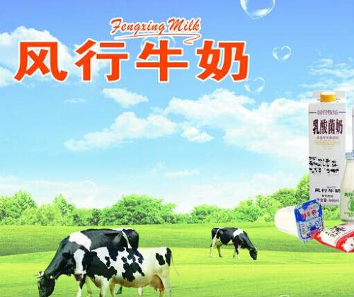 风行牛奶代理经销全国招商_1